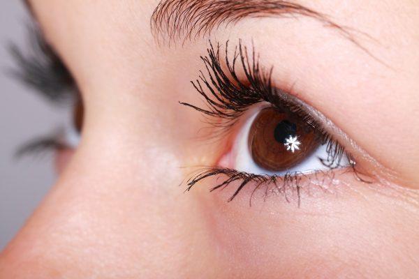 Gaze and eye contour - Signewords blogs