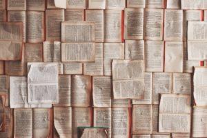 El traductor en la sociedad - Signewords