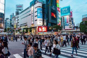 Signewords Japanese translation