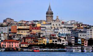 Signewords Turkish translation